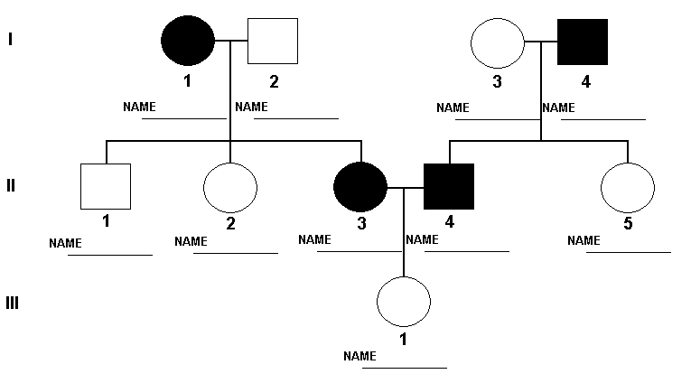 Genetics pedigree worksheet dimples